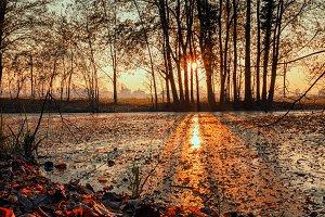 Sunset on pond