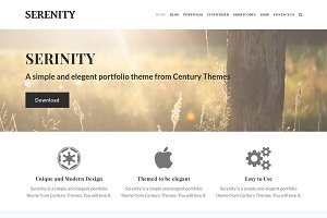 Serenity Creative Wordpress Theme