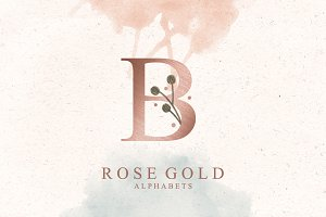 Rose Gold Alphabets