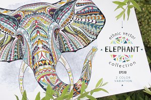 Ethnic Collection: Elephant