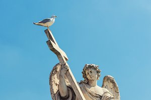 Angel Statue with seagull