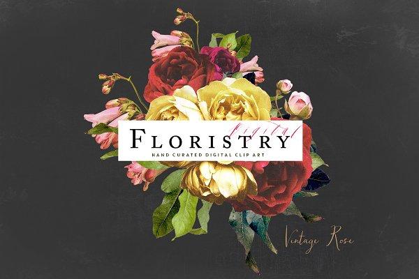 Digital Floristry - Vintage Rose