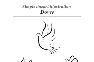 Doves vector illustration