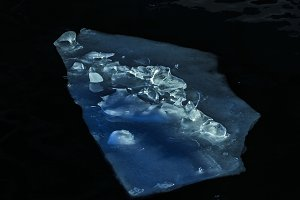 Great ice floes in blue halftones