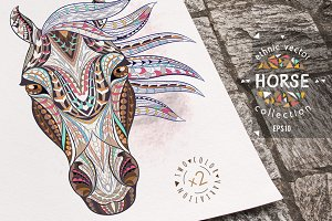 Ethnic Collection: Horse