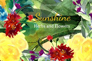 №38  Sunshine Herbs and Flowers