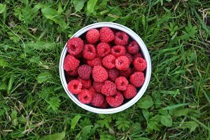 Raspberry on the grass