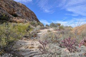 Landscape Desert Mountain Trail