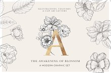 Awakening Floral Graphics & Letters