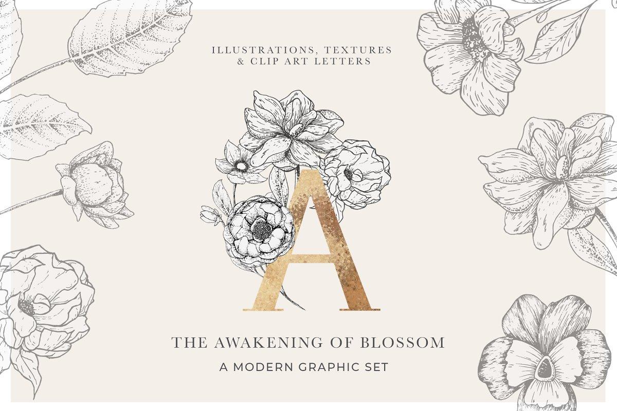 Awakening Floral Graphics Letters Illustrations Creative Market