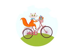 Cute cat on a pink bike