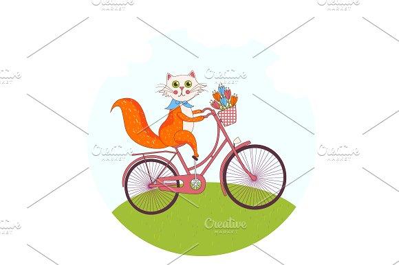 Cute cat on a pink bike
