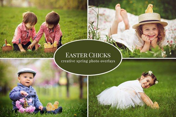 Easter Chicks photo overlays