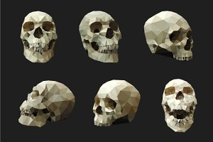 Polygonal Human Skull – Vector Set