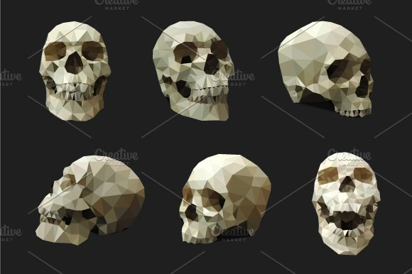 Polygonal Human Skull – Vector Set