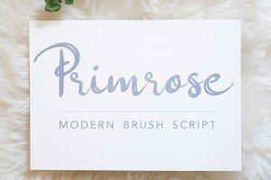 Primrose Modern Brush Script
