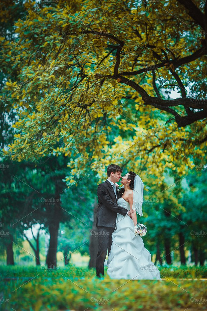 Groom and Bride in a park. wedding - People