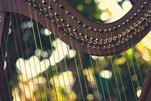 Harp instrument,Non-Pedal Harp
