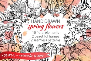 Hand-drawn spring flowers