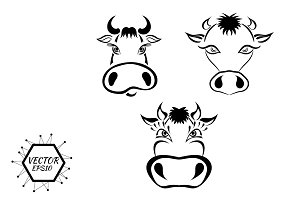 set of sketches cows