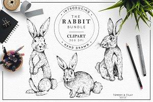 Hand Drawn Rabbits - Clipart Bundle