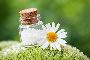 Homeopathy globules and daisy