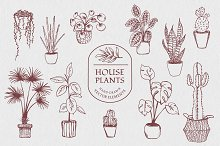Hand drawn vector house plant set by  in Illustrations