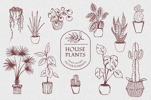 Hand drawn vector house plant set