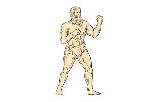 Hercules In Boxer Fighting Stance