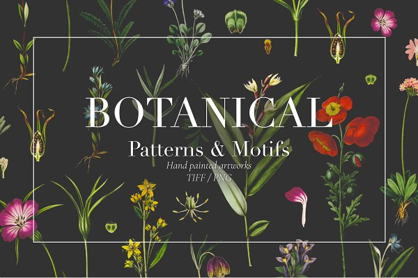 Graphic Patterns: Pink Linen - Botanical Luxe, Chic & trendy!