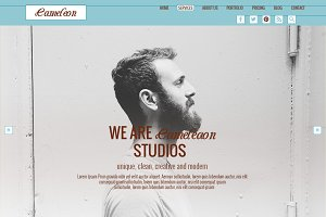 Cameleon - One Page PSD Template