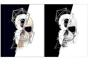 Skull illustration.Retro skull print