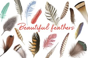 Marvelous vector feather collection