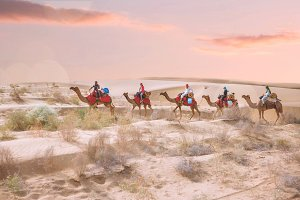 Tourist People Ride On camel