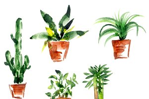 Cute watercolor plants