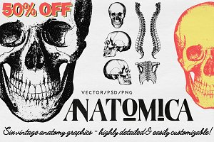 50% OFF: ANATOMICA - graphics pack