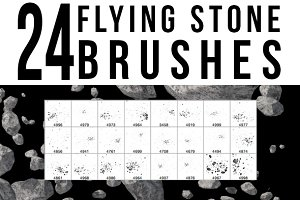 24 Flying Stone Brushes