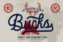 Bucks by  in Script Fonts