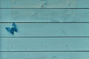 Butterfly on Blue Wood