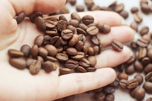 Coffee beans on the palm