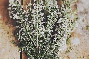 White erica bouquet