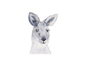 Watercolor Kangaroo Animal Art