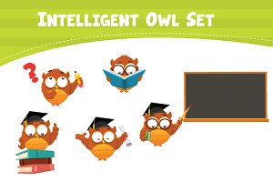 Intelligent Owl Set