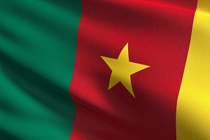 Cameroon national flag blowing in th