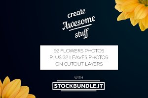 OVER 100 STOCK FLOWERS PHOTOS.