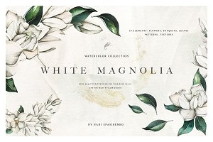 Watercolor White Magnolia