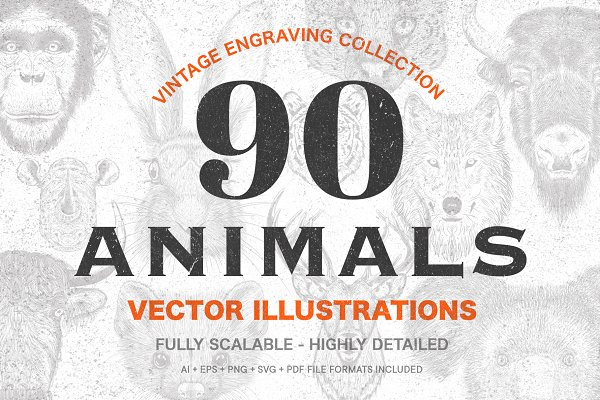 Illustrations: Prosymbols - 90 Animals Vintage Illustrations