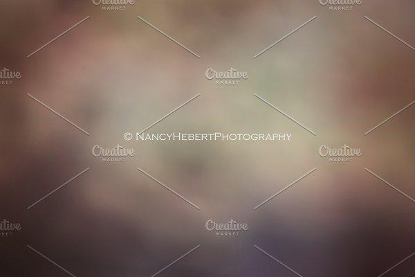 01 Fine Art Digital Texture/Overlay
