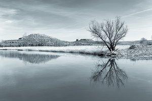 Toned Image of Winter Landscape