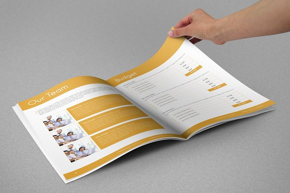 Professional Web Proposal Template in Stationery Templates - product preview 2
